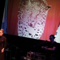 koncert Mister D. | fot. Bernie Kramer